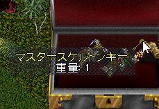 WS100006.jpg