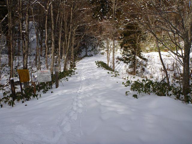 s1林道入口