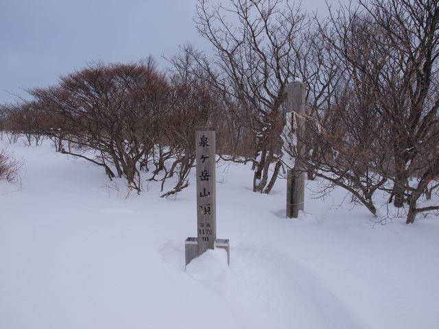s4泉ヶ岳山頂