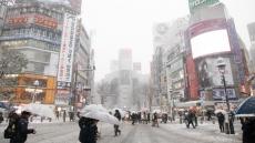 yukinoosore.jpg