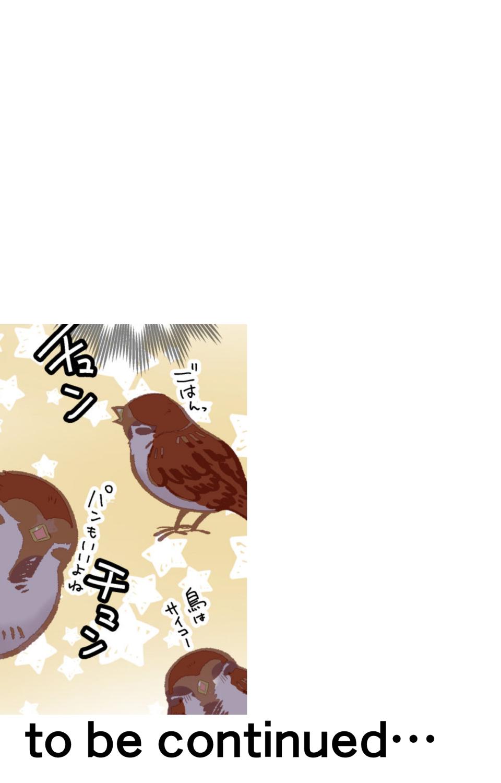 kotorikuesuto_15_007.jpg