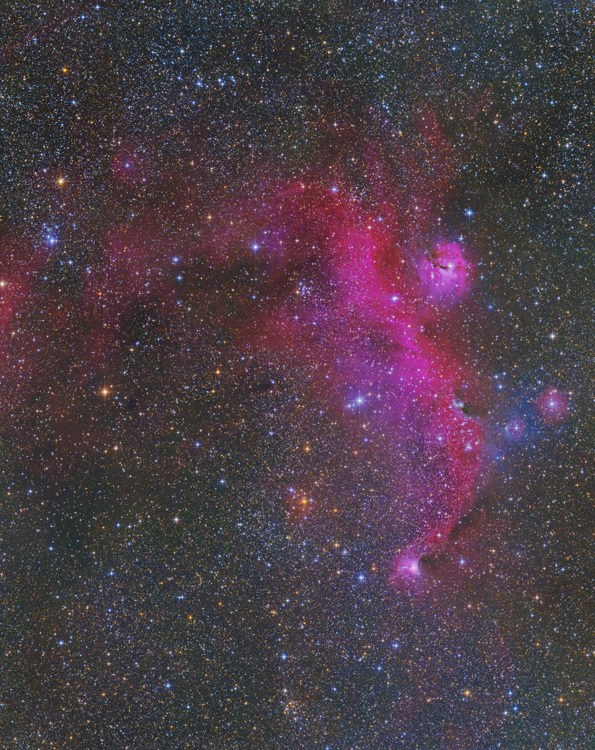 IC2177 かもめ星雲