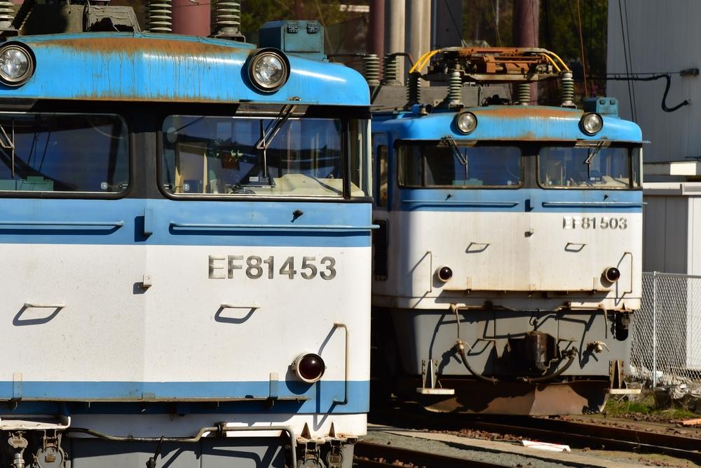 DSC_8128s.jpg