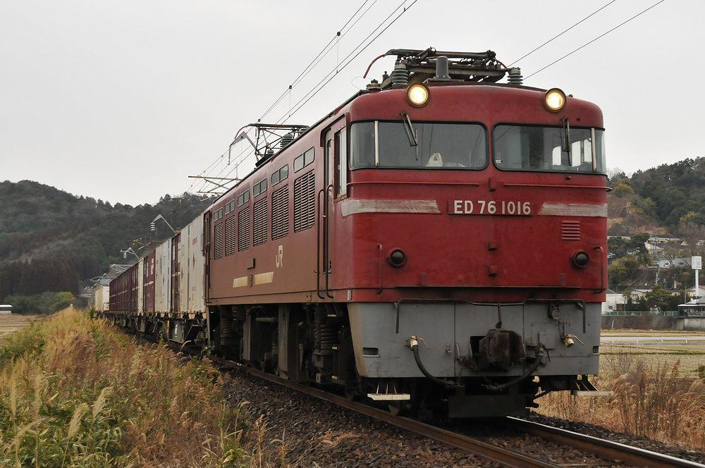 DSC_8995bctsf.jpg