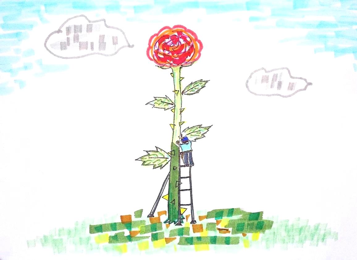 「植木屋さんだって植物に詳しいとは限らない」