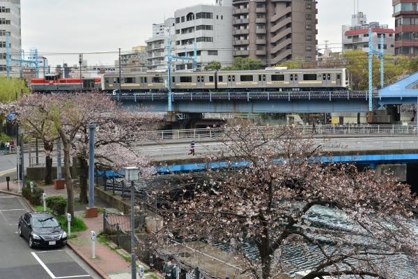 2019年3月29日 JR東日本根岸線 桜木町~関内 DE10+209系訓練車