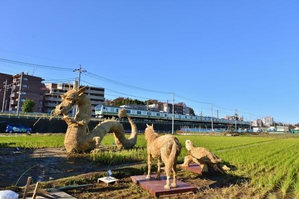 2019年11月30日 JR東日本横浜線 中山~十日市場 E233系