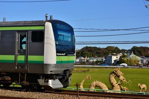 2019年11月30日 JR東日本横浜線 十日市場~中山 E233系H019編成