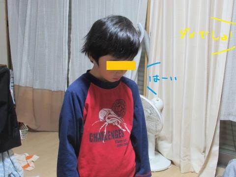 IMG_2731 - コピー