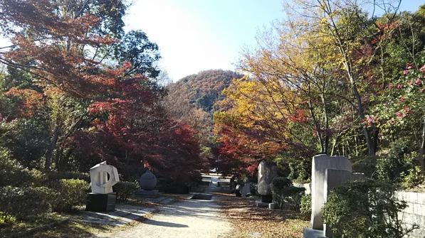 甲山の紅葉 (5)