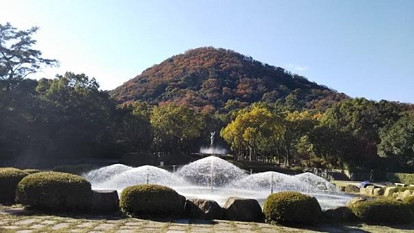 甲山の紅葉 (6)