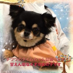 S__39174509.jpg