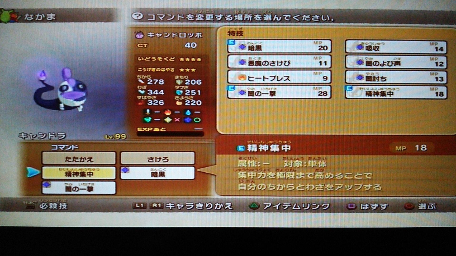 DSC_4044.jpg
