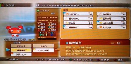 DSC_4807.jpg