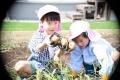 2019収穫祭2