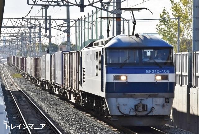 DSC_2208 (640x432)