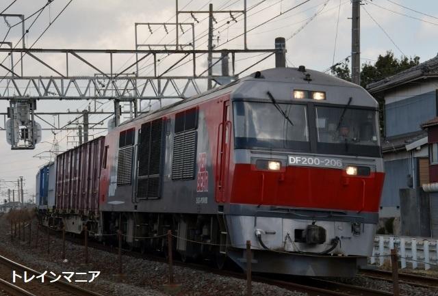 DSC_6802 (640x433)