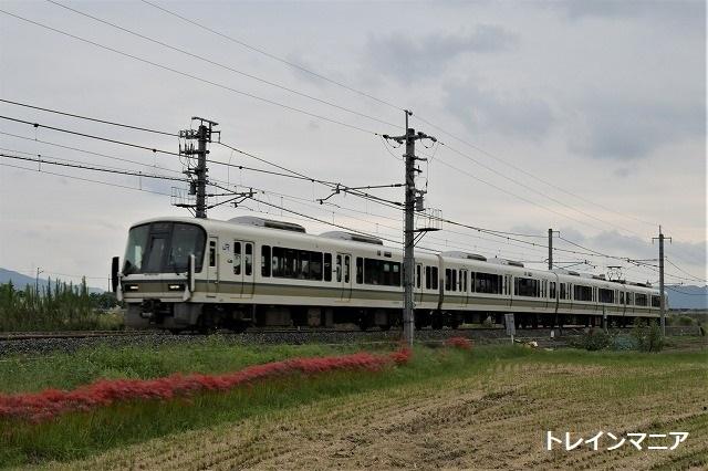 DSC_7153.jpg