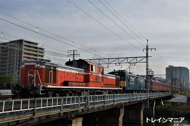 DSC_7664.jpg
