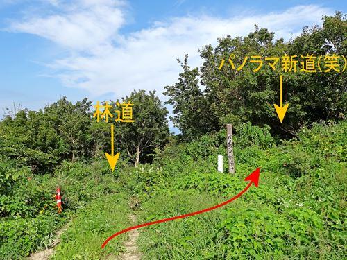 awashimaura07.jpg