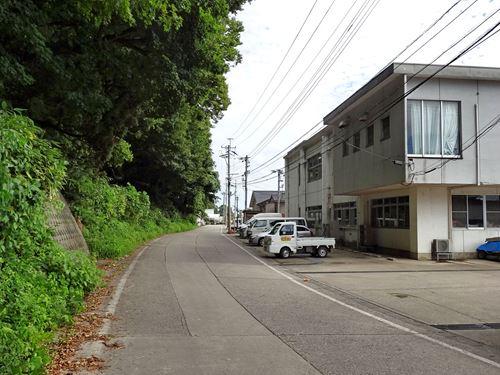 hatazaki01.jpg