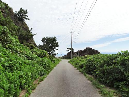 hatazaki04.jpg