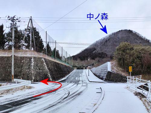 kamegamori03.jpg