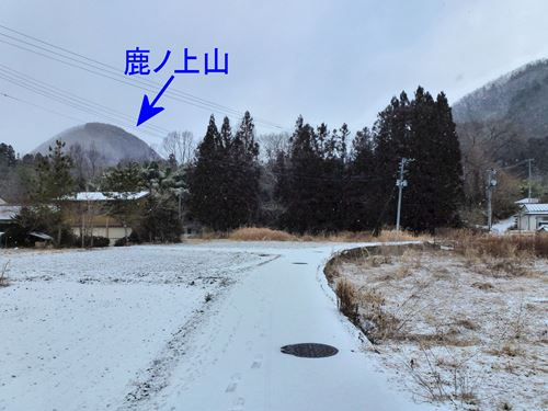 kamegamori05.jpg