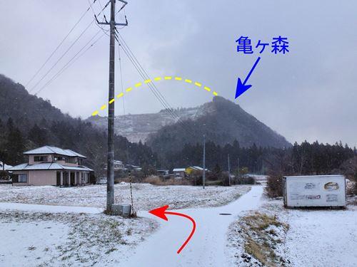 kamegamori06.jpg
