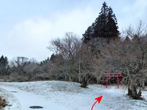 kamegamori07.jpg