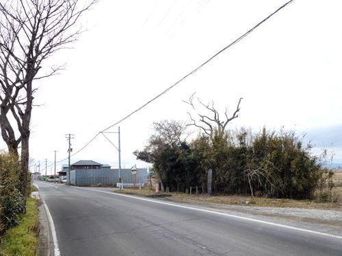 tanatsugi_m05.jpg