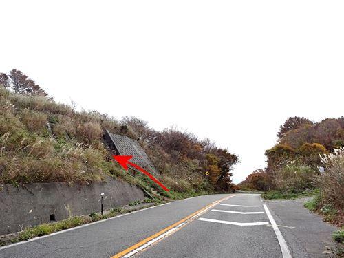 yahikoyama02.jpg
