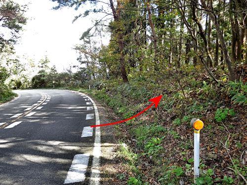 yahikoyama_s04.jpg