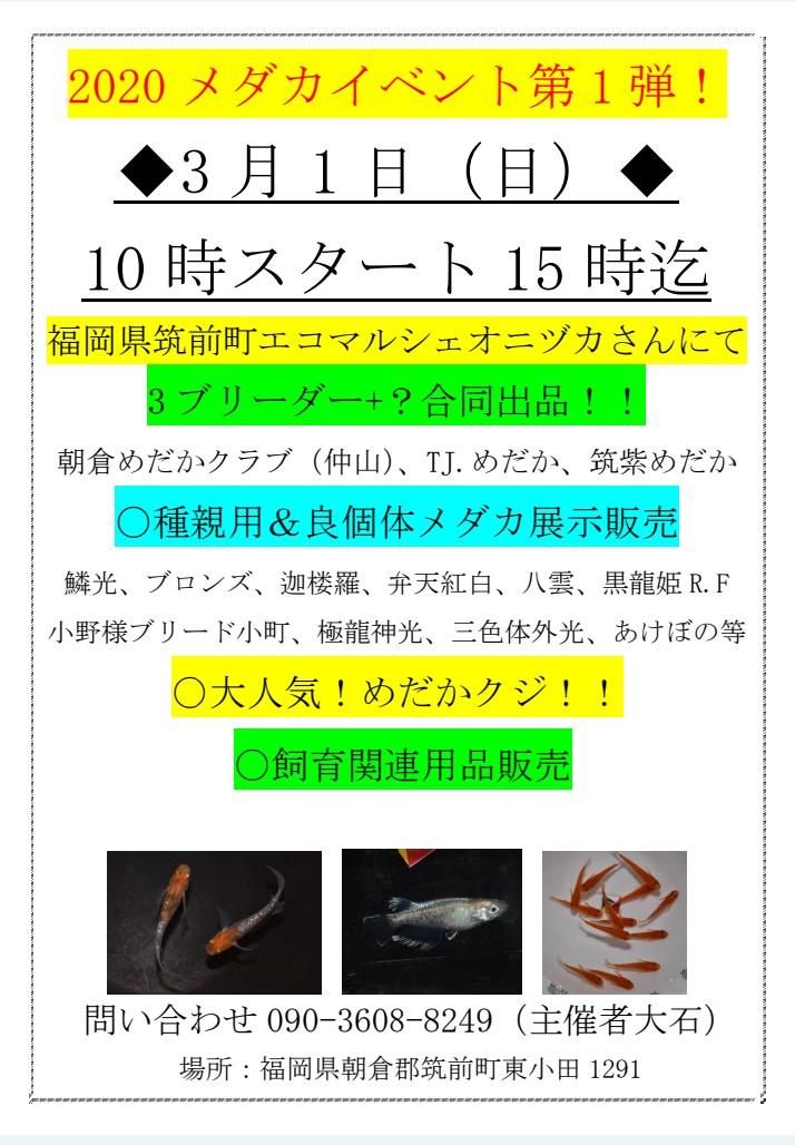 Effect_20200214_153231.jpg