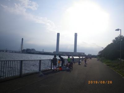 IMGP5993.jpg