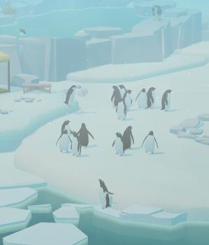 2019 0905 ペンギンの島2