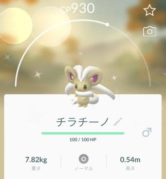 2020 0202 ポケモン2