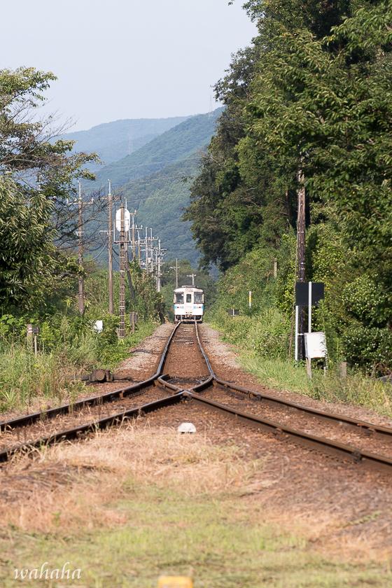 010810tokusimasen-2.jpg