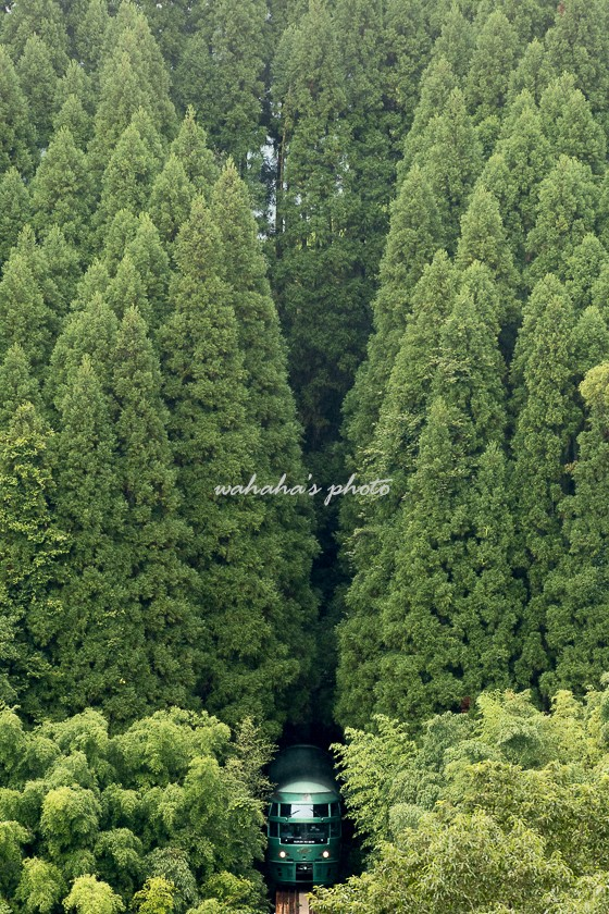 010901kyudai-7.jpg