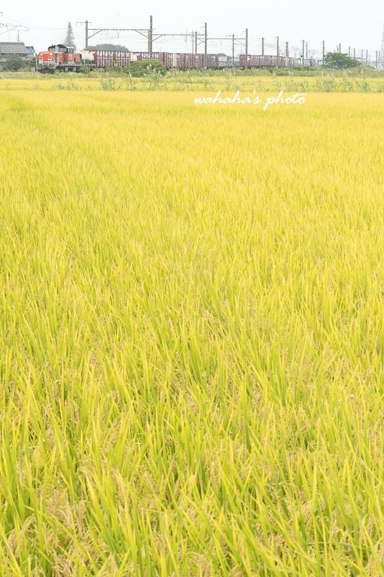 010921kansai-1.jpg
