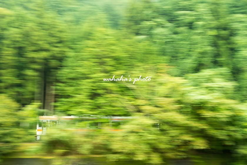 010921meishousen-3.jpg
