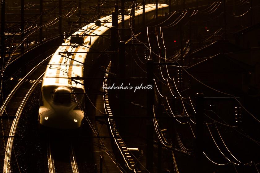 011013sinjikouen-1.jpg