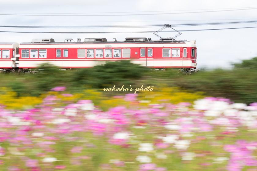 011014sintetsu_onoichiba-2.jpg