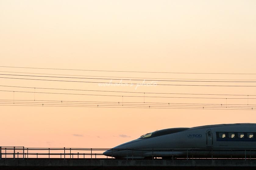 011116kanagasaki-2.jpg