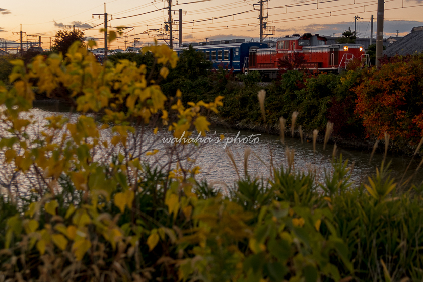 011119kanagaskai_abosikunren-1.jpg