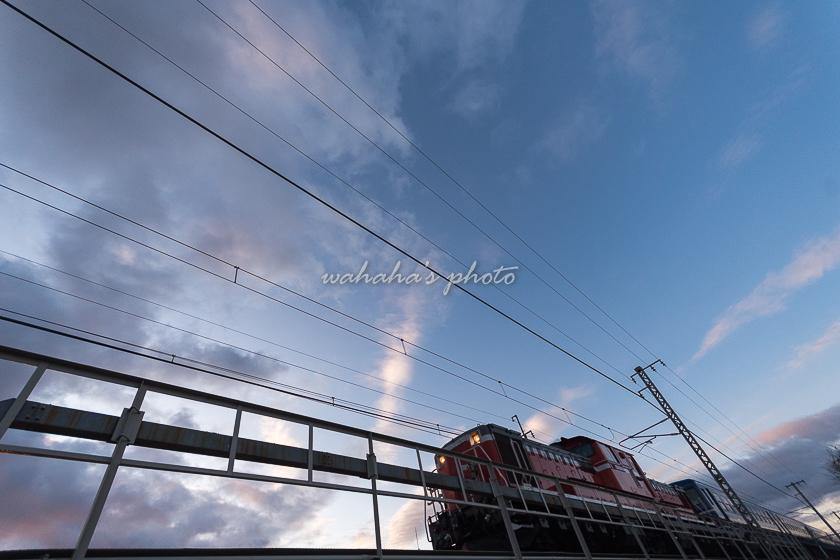 020110setogawa_aboshi-1b.jpg