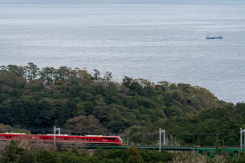 020201izukyu-1c.jpg