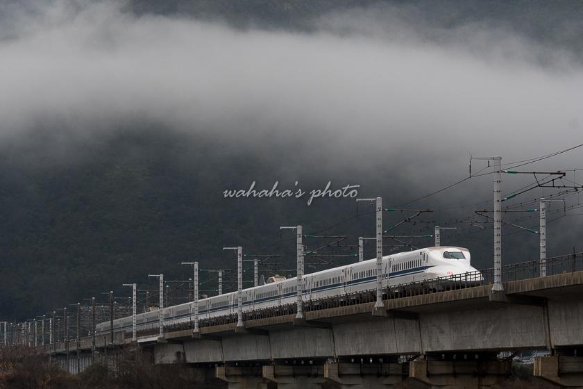 020215chikusagawa-2.jpg