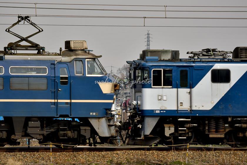 020220kanagasaki-1.jpg