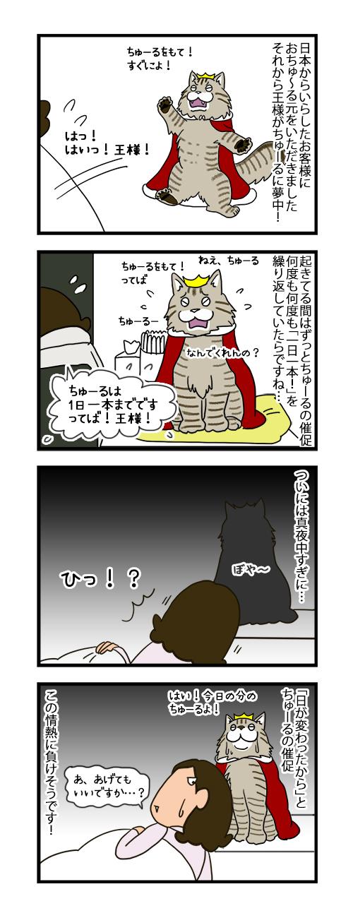 12092019_cat4koma_B.jpg